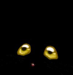 Adotta un Mouse Crominavi