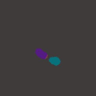 Adotta un Criceto Irisor