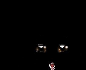 Adotta un Criceto Beige e nero